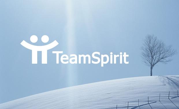 TeamSpirit人事情報管理で、履歴管理が可能に!