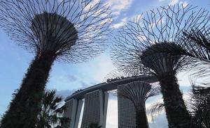 チームスピリット、初の海外拠点をシンガポールに設立