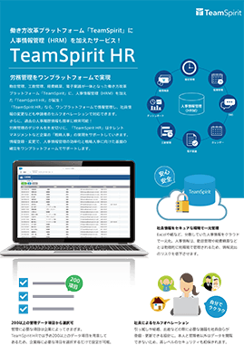 TeamSpirit HR